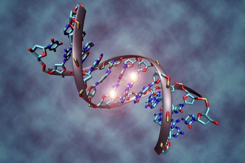「基因管理並非遙不可及的未來故事,而是已經正在我們眼下發生。」(示意圖)