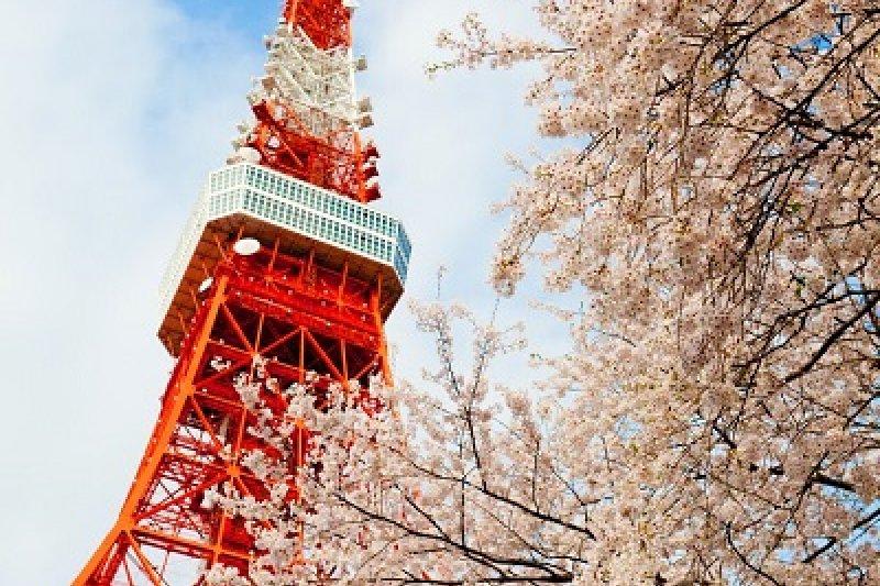 日本政府為2020奧運做準備,提出「無現金支付願景」報告,希望提升行動支付使用率與商機。(取自 Chris Chan @Flickr)