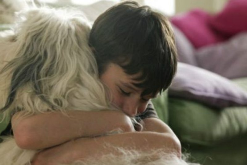 寵物其實並不了解孩子在說什麼,但孩子仍然會向寵物傾訴煩惱。(BBC中文網)