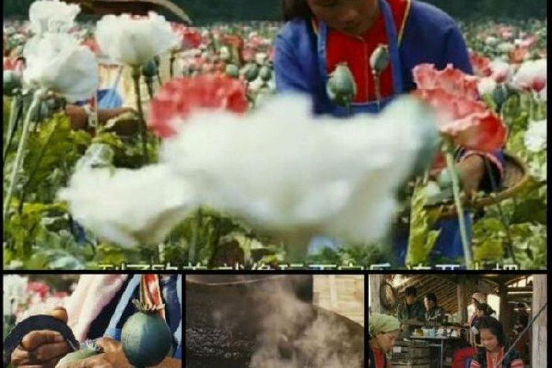 金三角地區的毒品一條鞭產製。(截取央視報導畫面)