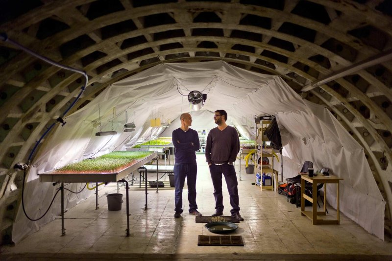 倫敦的地下農場(圖/Growing Underground臉書)