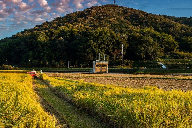 日本面臨嚴重的鄉村人口外流問題。(圖/Takuma_Kimura@flickr)