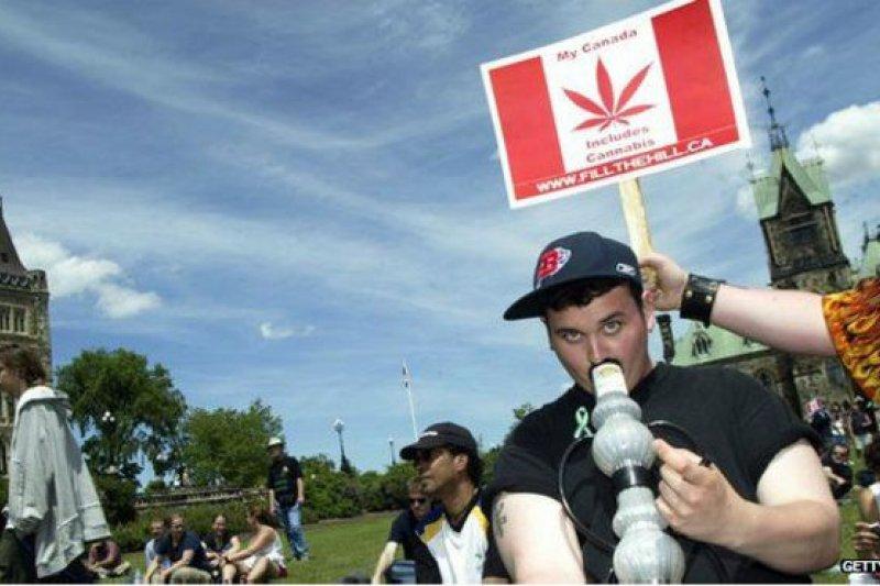 加拿大大麻抗議活動。(取自BBC中文網)