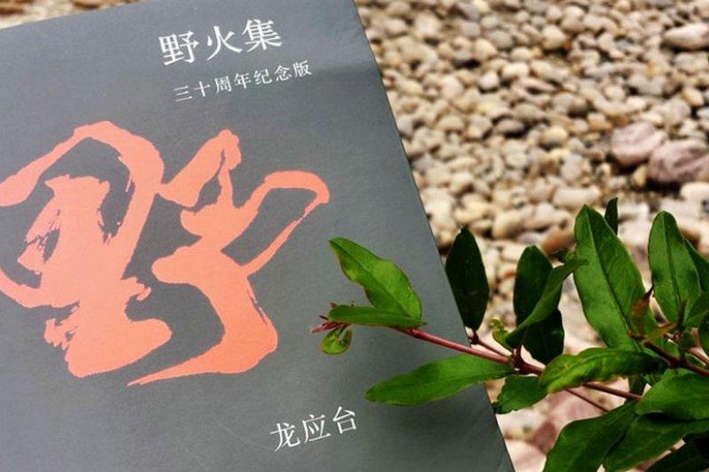 圖為龍應台《野火集》三十周年紀念版書封(取自鳳凰網)