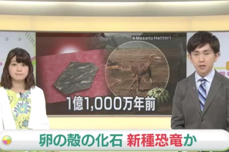 日本發現新種恐龍蛋殼化石。