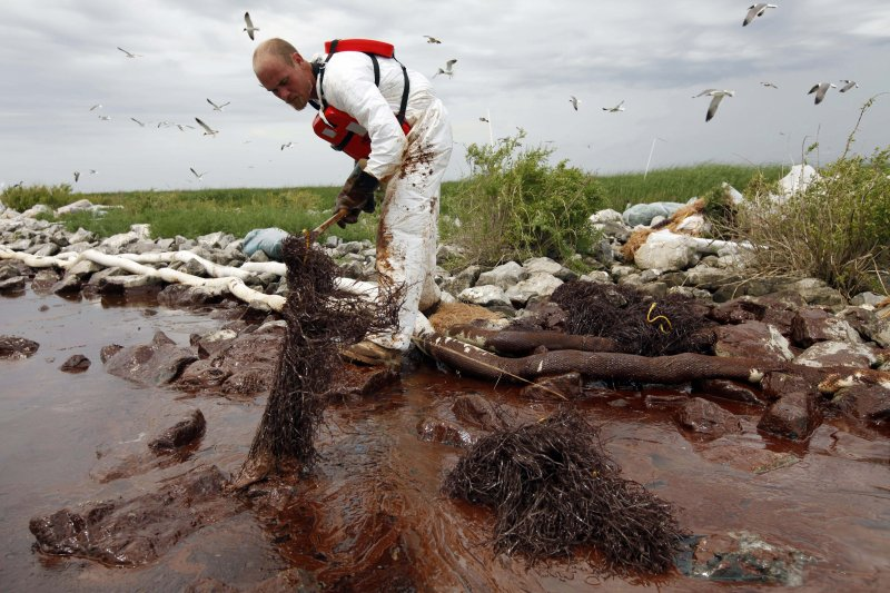 漏油事件對於美國墨西哥灣的生態造成不可逆的傷害。(資料照,美聯社)