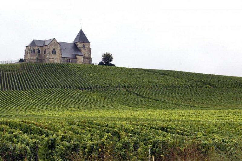 法國香檳地區聯合國「申遺」成功(BBC中文網)