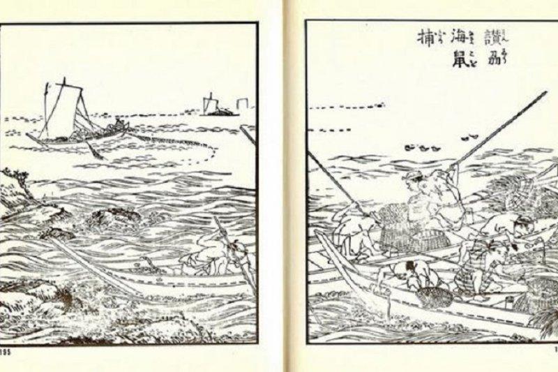 (資料圖:捕撈海鼠/騰訊大家網)