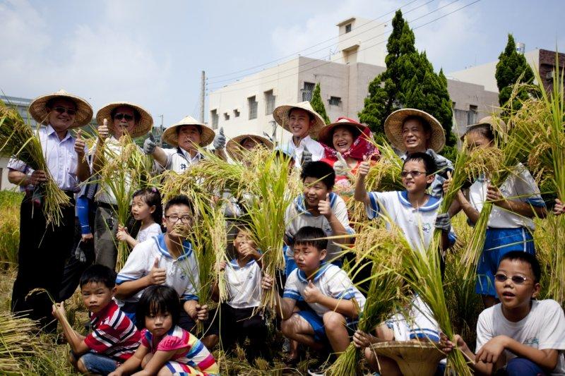 新竹市長林智堅(後中)與學生收割今年初春共同插秧的成果,推廣食農教育。(新竹市政府提供)