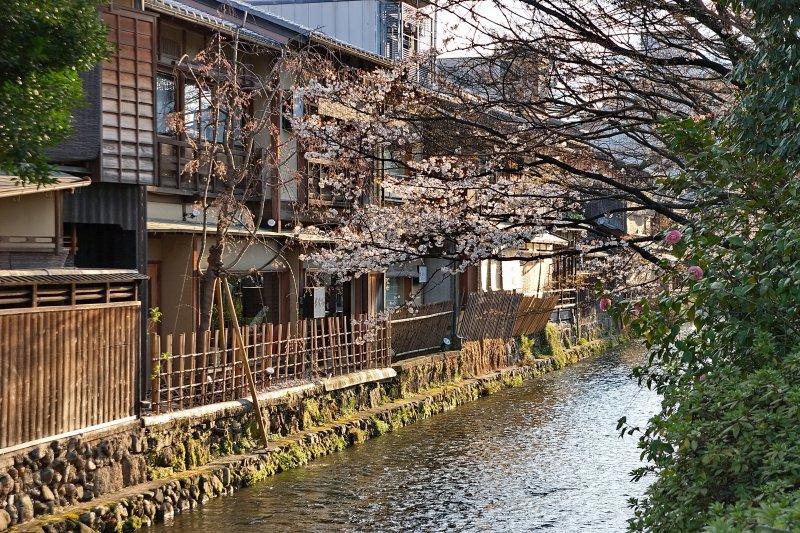 都市化、人口老化讓廢棄空屋越來越多,日本政府如何處理?(圖/Kyoto-picture@flickr)