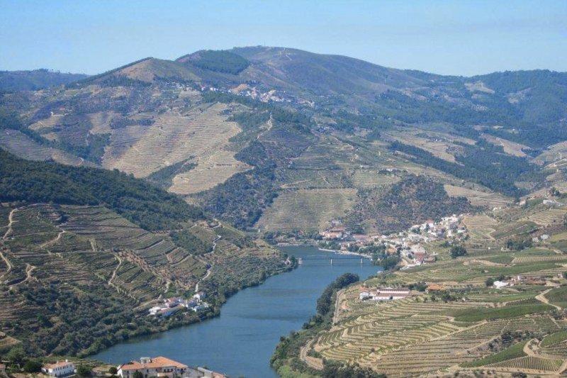 以Cima Corgo為中心的上斗羅河酒區,聯合國教科文組織早在2001年即已指定為世界遺產。(取自網路)