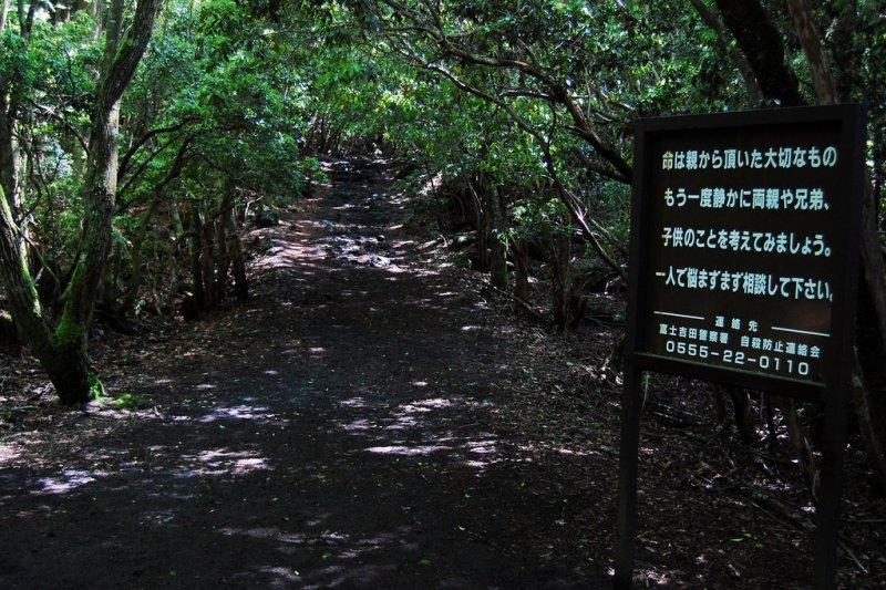 自殺森林入口設有阻止自殺的字牌(圖/keio@flickr)