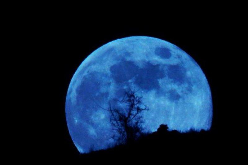 今晚別忘抬頭看藍月。(取自推特)