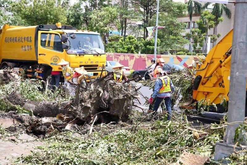 蘇迪勒颱風威力驚人,吹倒高雄市1萬3千棵樹,預估需花費1億8千萬元復建。(取自陳菊市長臉書)