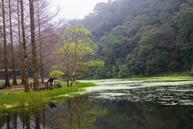 南勢溪上游的福山植物園