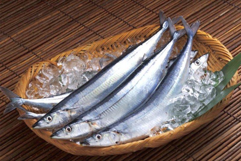 台灣為北太平洋秋刀魚捕獲量第一的國家,獲邀參與北太平洋漁業委員會。(圖片來源:取自網路)