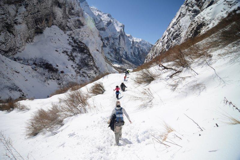 「我歷年跋山涉水,探勘林莽,經驗可真是太多了。在南華、在佛光、在湖北弘道大學,以及無數擬辦學校、園區之地,莫不深涉榛蕪,擘劃未來。」(示意圖,udeyismail@flickr)