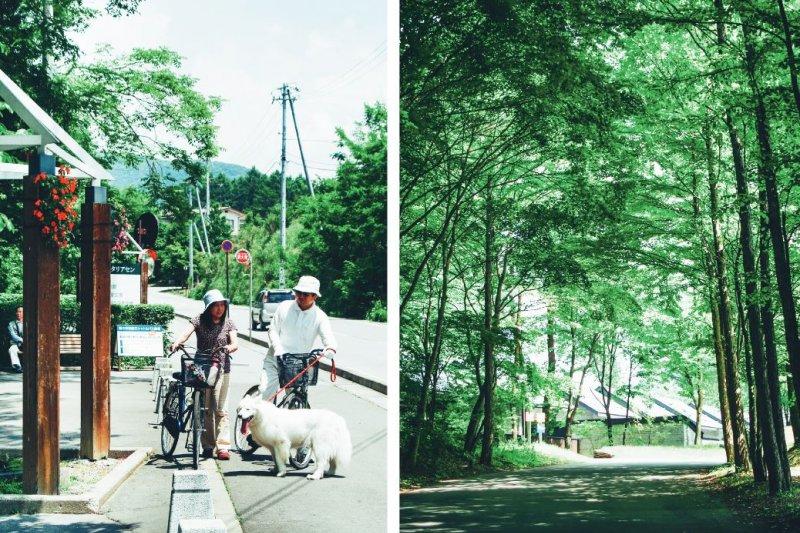 (左) 在涼爽的輕井澤過夏天,多半選擇騎腳踏車,吹著涼風慢速悠閒欣賞當地風景。 (右) 參天的大樹在夏天提供一方蔭蔽,輕井澤隨處可見。