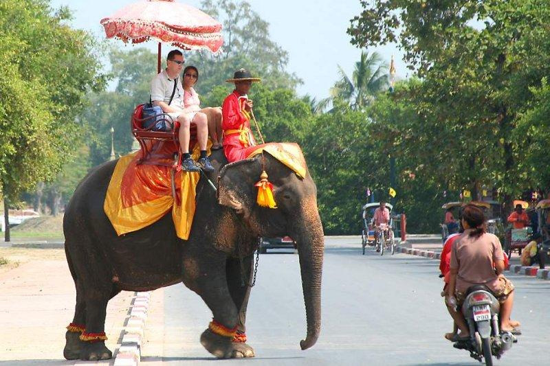 泰國清邁驚傳大象殺死象夫的意外事件。(圖中人物與新聞無關)