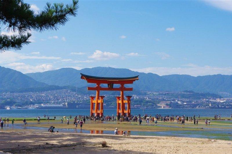 itsukushima5.jpeg