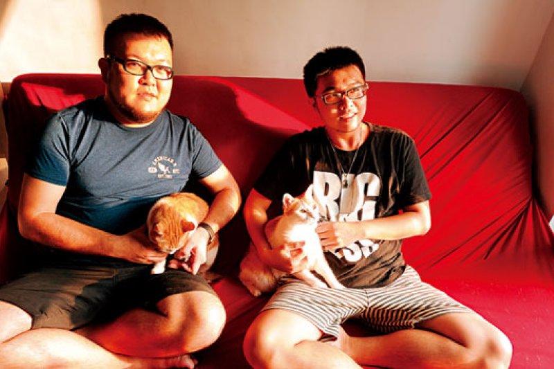 志銘(左)和狸貓(右)原本記錄7 隻流浪貓生活的臉書,又萌又療癒,變成台灣人氣最高的寵物粉絲頁。(攝影者.程思迪)