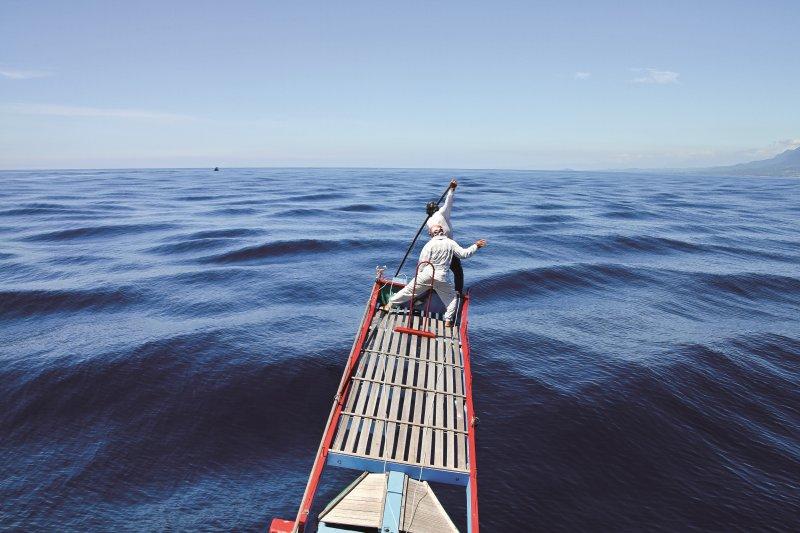 與海浪、旗魚搏鬥的驚險場景,不僅畫面令人讚嘆,更是一場人與魚的對決。(圖/行人文化實驗室提供,水產試驗所東部海洋生物研究中心洪曉敏授權)