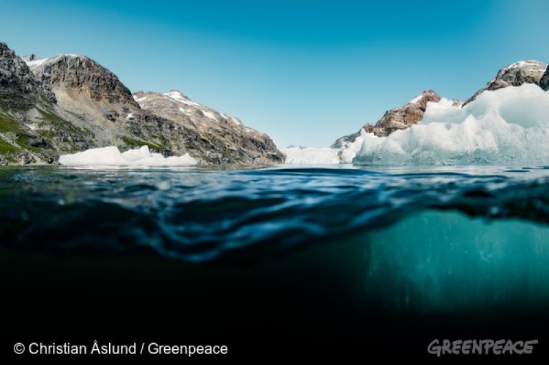 鯨魚的聽覺比人更敏感,在海中進行地震勘探爆破,可導致鯨魚短暫、甚至永久失去聽覺。(圖/greenpeace)