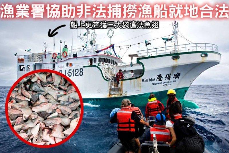 環保團體綠色和平指控,台灣籍漁船順德慶888號非法作業,船上被查獲的非法鯊魚鰭,經鑑定證實內含瀕危魚種。(取自GREENPEACE綠色和平臉書)