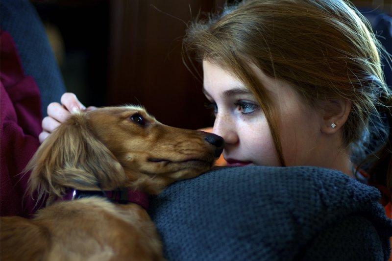 與寵物接觸,須小心寄生蟲上身。(圖/William Franklin@Flickr)