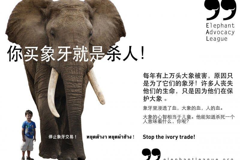 生態保育團體的反象牙廣告(取自網路)
