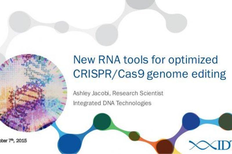 利用基因剪輯的技術突破,異種器官移植的風險將大幅下降。(取自推特)