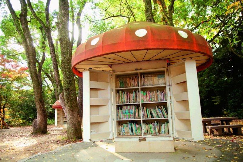 書庫周圍有楠樹等大樹,夏天的樹蔭很舒服