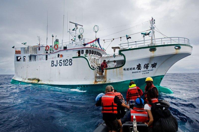 台灣遠洋漁業2015年10月1日被歐盟列入打擊非法、未報告及不受規範(Illegal, Unreported and Unregulated,IUU)漁業不合作國家警告(黃牌)名單,歐盟執委會今(27)日終於決議,將我國自歐盟打擊IUU漁業黃牌名單移除。圖為2015年被查獲非法捕鯊的我國漁船。(資料照,綠色和平提供)