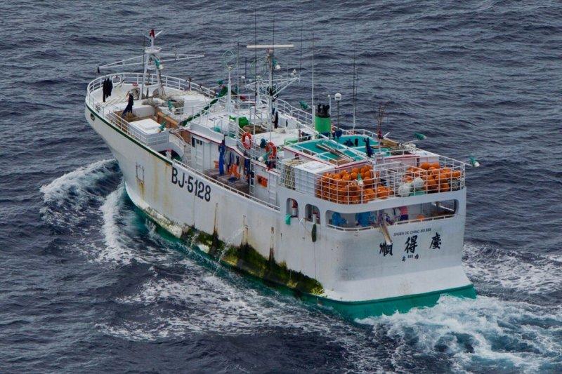 順得慶888號被查獲非法捕撈黑鯊,綠色和平強力呼籲漁業署修正法案、重罰非法作業的船隻及船長。(綠色和平提供)