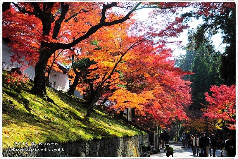 秋天的京都是紅色的,沿著鐵路享受楓紅的下午!(圖/時光手帖)