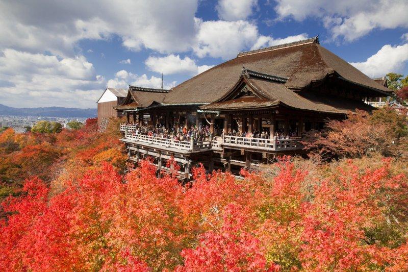 以四百年為單位規畫的清水寺有什麼遠景?(圖/marki1983@flickr)
