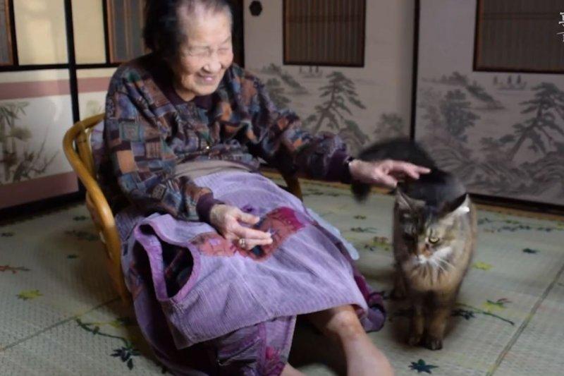 茶茶除連結高木奶奶和高木夫婦兩家外,也成為了奶奶最好的看護。(翻攝影片)