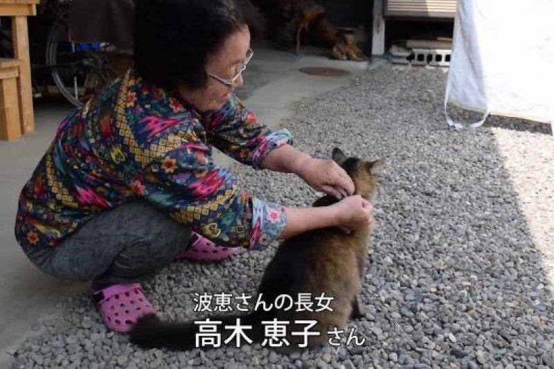高木奶奶的大女兒惠子將記有茶茶生活的紙條繫在項圈上。(翻攝影片)