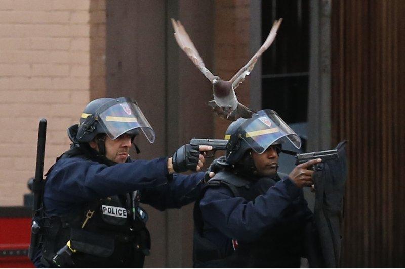 巴黎警方特種部隊在聖丹尼區圍捕恐攻主嫌,激烈駁火(美聯社)