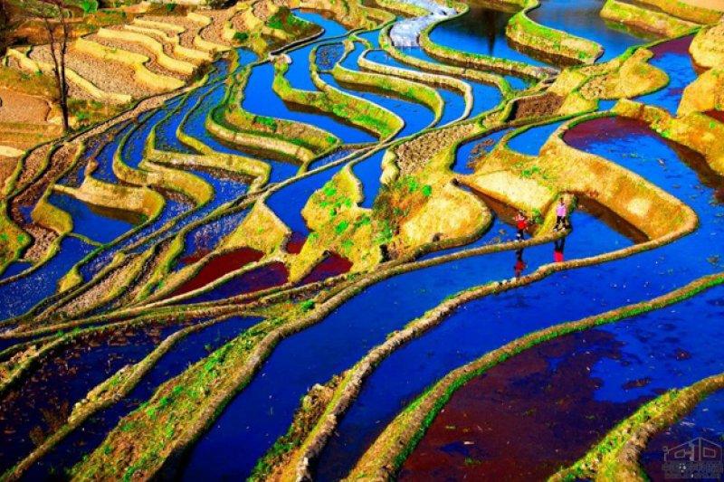 有沒有想過,看起來超美麗的梯田,人要如何在上面耕種呢?(圖/中國數字科技館)