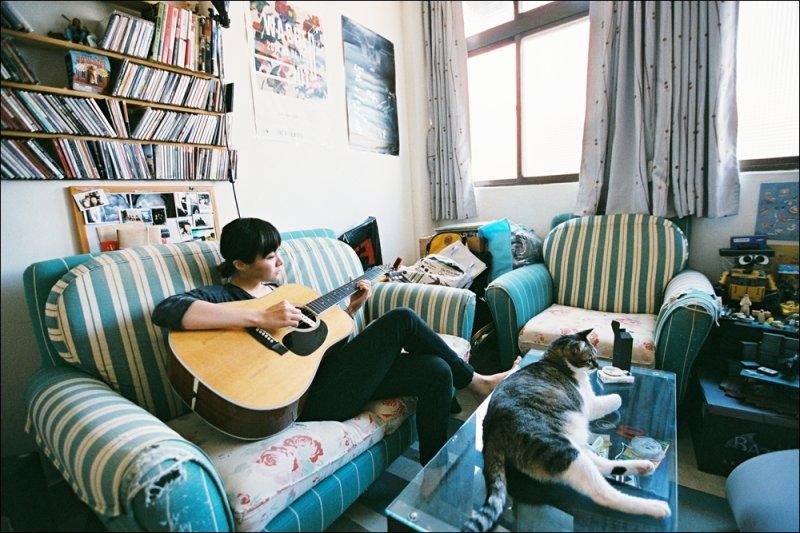 鄭宜農談吉他時,一旁Q姬安穩地躺臥在茶几上聆聽,音樂人的家因為有貓,氣氛更顯得溫暖愜意(圖/Kris Kang攝影)