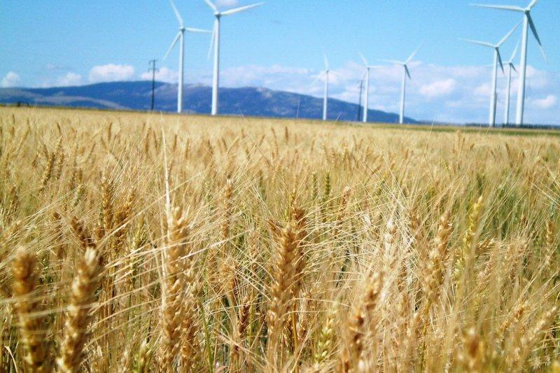 臺灣務農者高齡化,運用除草劑降低勞力成本有其必要性(圖/Idaho National Laboratory@flickr)