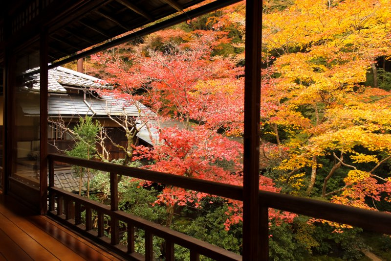 深色的木造建築,與廊外楓紅呈現強烈對比。(圖/Christian Kaden@Flickr)