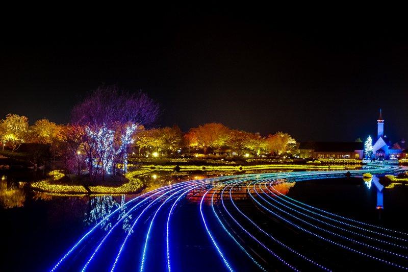 白晝的花海,入夜就化身燈之海。(圖/Carlos Honda@Flickr)