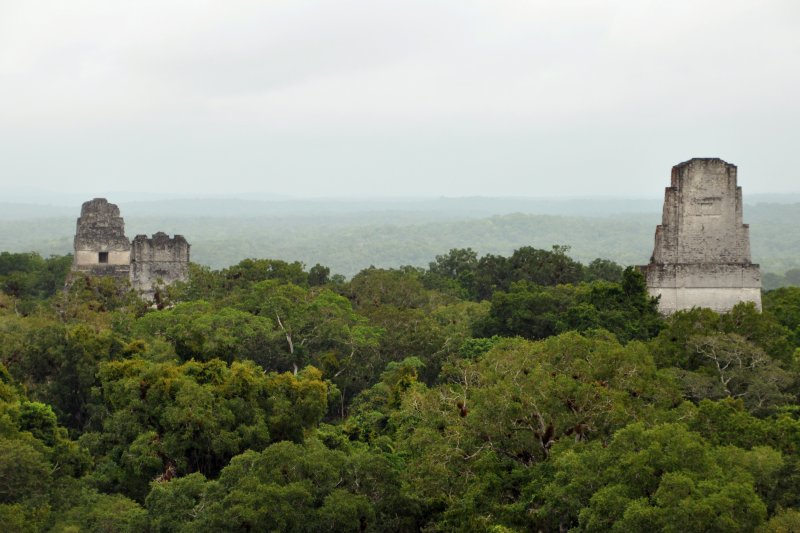 Mayan ruins in Tikal National Park, Guatemala 星際大戰拍攝地點