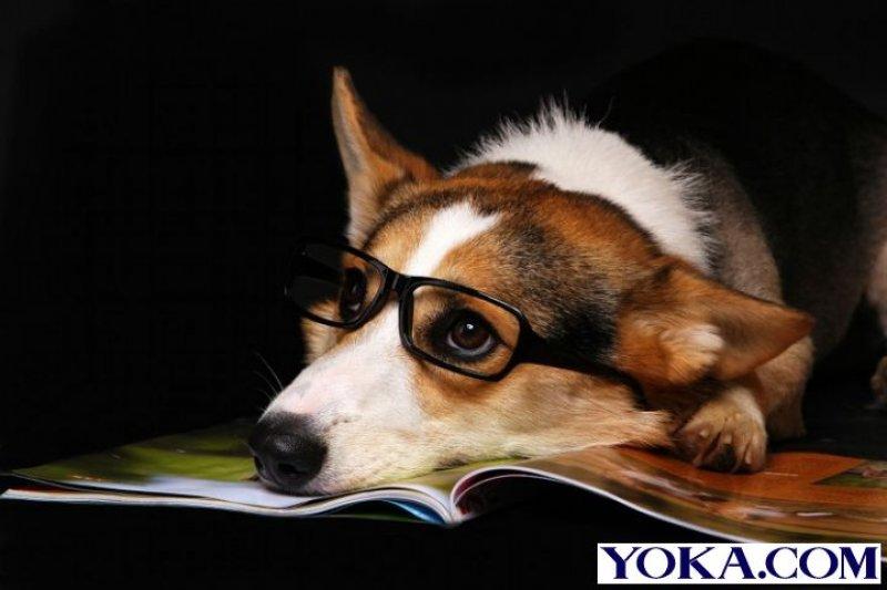 年末盤點,每個人都該有一本書。(圖片來源:yoka.com)