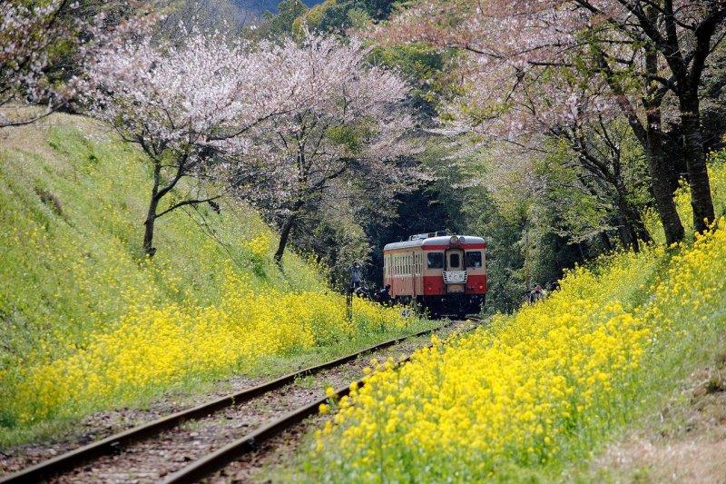 到了日本,鐵道旅遊是絕對不能錯過的行程之一!(圖/retrip)