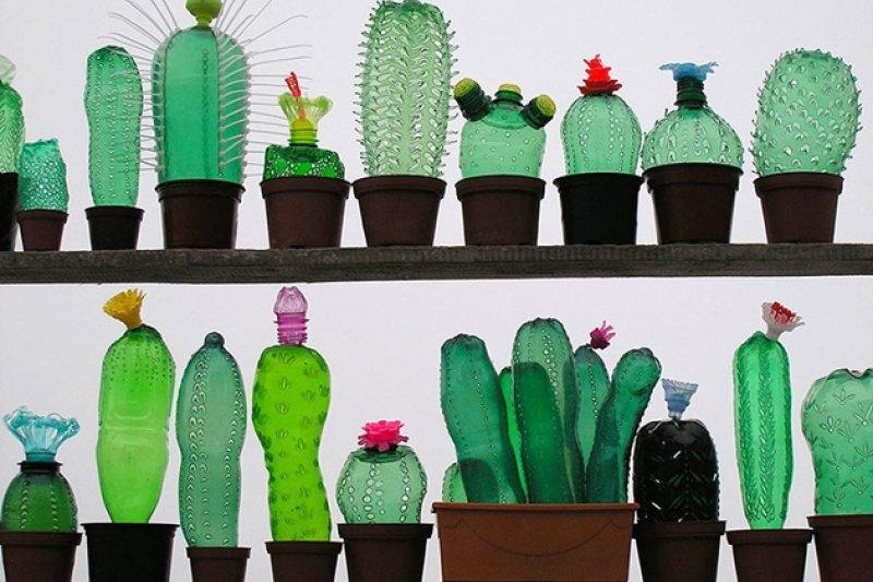 廢物植栽既環保又養不死,一整年放著不管也不會枯萎!(圖片來源/Veronika Richterová )