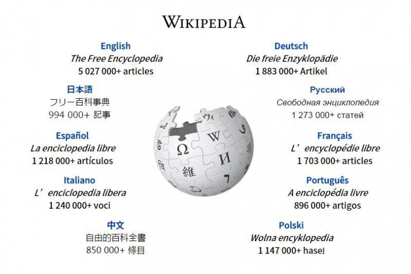 維基百科網站頁面。(取自維基百科)