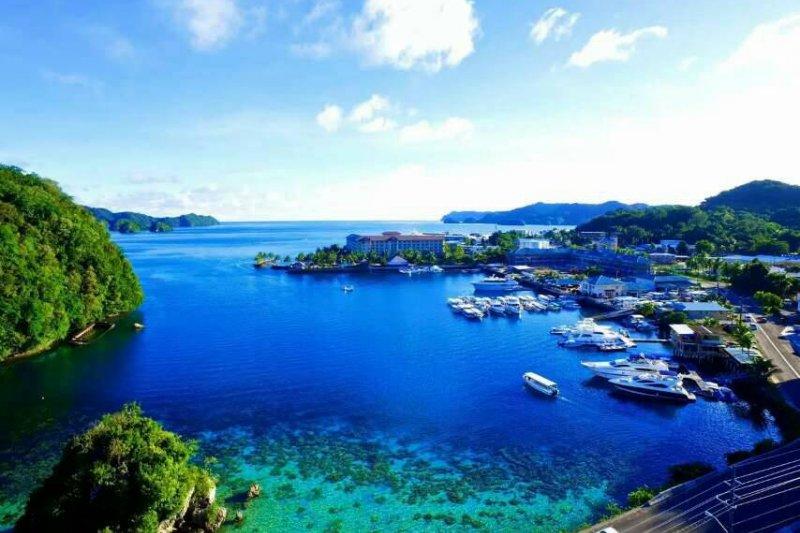 低污染的帛琉海域,就連飯店碼頭旁的淺灘都像一座天然水族館。(圖/邱宏照提供)